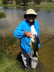 Fish Tales 084