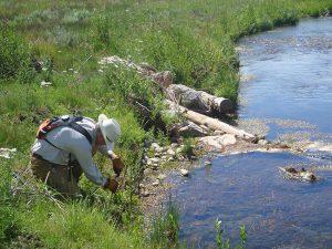 Strawberry River Project Jul 2010 02