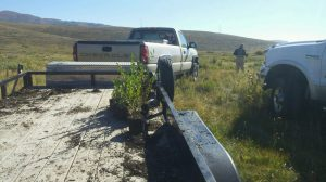Strawberry River Project Sep 2015 04
