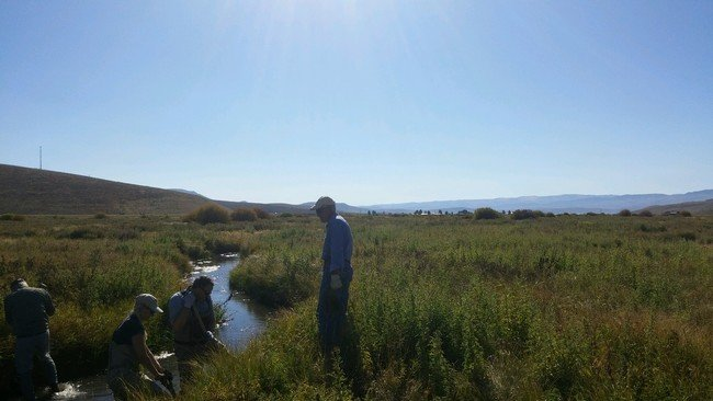 Strawberry River Project Sep 2015 05